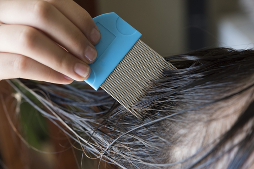 7 Tips to Avoid Head Lice in the New School Year